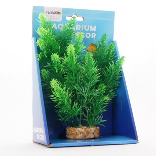 YUSEE - Ceratophyllum 20cm