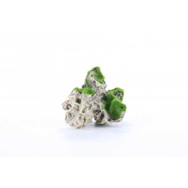 AQUA DELLA - Moss Rock 2 15.5x10.5x12.8cm