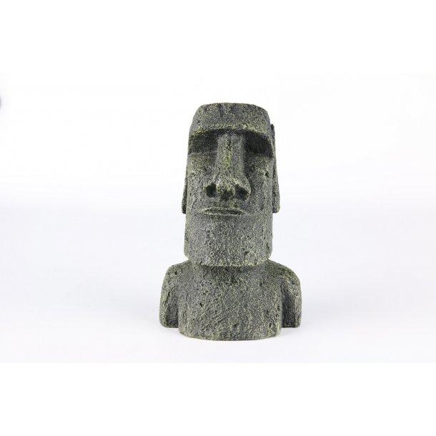 AQUA DELLA - Rano - 11.2x8.6x17cm