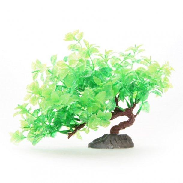 YUSEE - Bonsai Træ