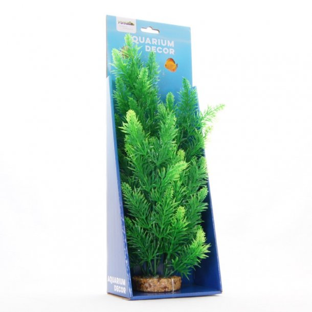 YUSEE - Ceratophyllum 35cm